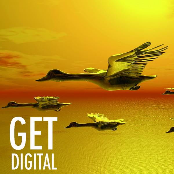 Digital + Web